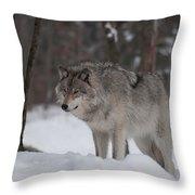 Timberwolf Series 4 Throw Pillow