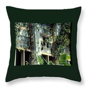 Time And Disrepair Throw Pillow
