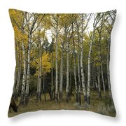 Time Fading Throw Pillow