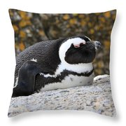 Time For A Snooze Throw Pillow