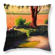 Time For Planting, Peru Impression Throw Pillow