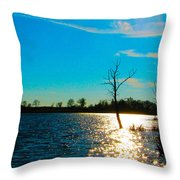 Time In The Sun Throw Pillow