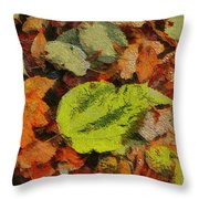Time Of The Season Throw Pillow