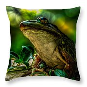 Time Spent With The Frog Throw Pillow