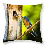 Time To Fly Throw Pillow