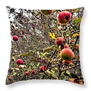 Time To Pick The Apples Throw Pillow
