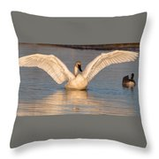 Time To Stretch Throw Pillow
