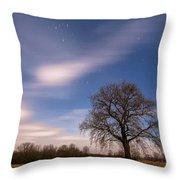 Time Traveler Throw Pillow by Davorin Mance