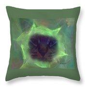 Time Warp Cat Throw Pillow