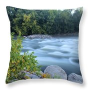 Timeless Raindrops Throw Pillow