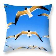 Timeless Seagulls Throw Pillow