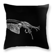 Times Past In Black And White Throw Pillow
