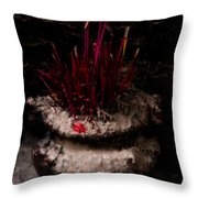 Timeworn Incense Pot Throw Pillow