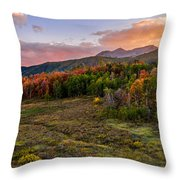 Timp Fall Glow Throw Pillow by Chad Dutson