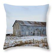 Tin Barn Color  Throw Pillow
