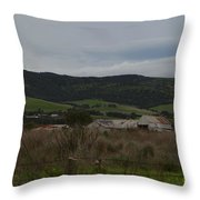 Tin Sheds Throw Pillow