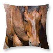 Tensile Strength Throw Pillow