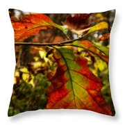 Tinged In Red Throw Pillow