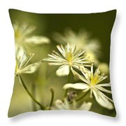 Tiny And Delicate Throw Pillow