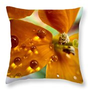 Tiny Dew Drop On Wild Flower Macro Throw Pillow
