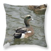 Adorable Tiny Duck Swimming Throw Pillow