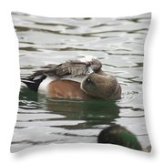 Tiny Duck Cleaning 1 Throw Pillow