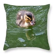 Tiny Duckling Throw Pillow
