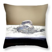 Tiny Flecks Of Colored Light Throw Pillow