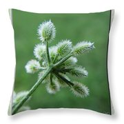 Tiny Flower Head Before Bloom Throw Pillow