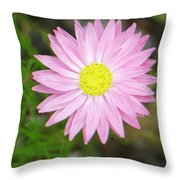 Tiny Lovely Shining Star Throw Pillow