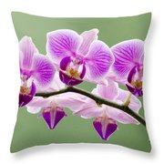 Tiny Orchid Faces Throw Pillow
