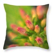 Tiny Pink Buds Throw Pillow