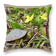 Tiny Turtle Close Up Throw Pillow