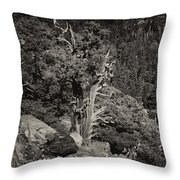 Tioga Pass Road Sepia Throw Pillow