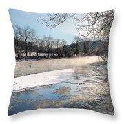 Tioughnioga River Landscape Throw Pillow