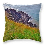 Tip Of Cape D'or-ns Throw Pillow
