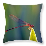 Tip Of The Grass Throw Pillow