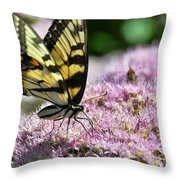 Tip Toe Through The Flowers Throw Pillow