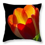 Tippy Throw Pillow by Doug Norkum