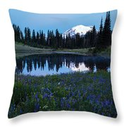 Tipsoo Reflection Tranquility Throw Pillow