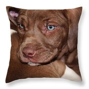 Tired Out Throw Pillow