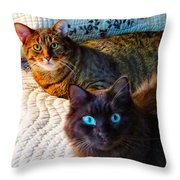 Tired Two Throw Pillow