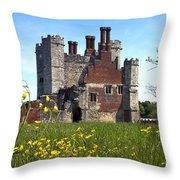 Titchfield Abbey Buttercups Throw Pillow