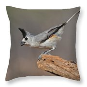 Titmouse Preparing For Takeoff Throw Pillow