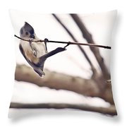 Titmouse Pull-ups Throw Pillow