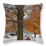 To Everything There Is A Season... Throw Pillow by Diane E Berry