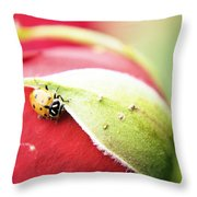 To Live Upon Such Colored Satin Throw Pillow