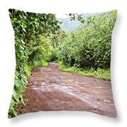 To Seclusion Throw Pillow