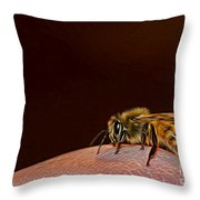 To Sting Or Not To Sting II Throw Pillow