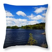 To The Island And Back Throw Pillow